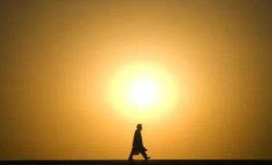 A-man-walks-at-sunset-in--002